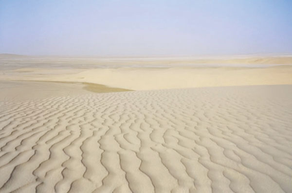 Sand dunes typical of southern regions of Qatar. 卡塔尔电网面临着污秽和 快速扩容的双重挑战 卡塔尔电网面临着污秽和 快速扩容的双重挑战 Pic523