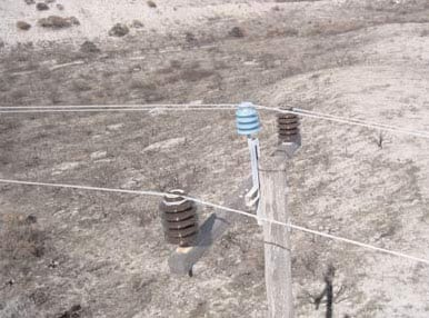 22 kV line equipped with one blue 4-shed porcelain insulator and two brown 5-shed porcelains (standard 33 kV).  insulator Australian Utility Confronted Insulator Pollution 22 kV line equipped with one blue 4 shed porcelain insulator