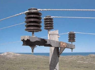 22 kV porcelain insulators on burnt cross arm. insulator Australian Utility Confronted Insulator Pollution 22 kV porcelain insulators
