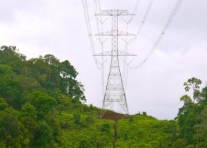 Selective Application of EGLAson Transmission Lines