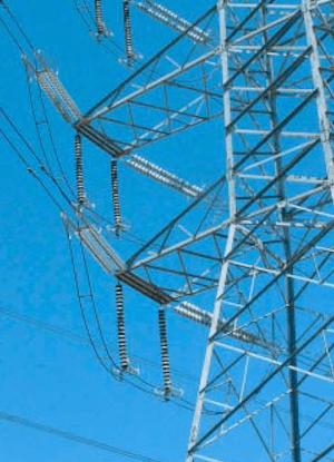 insulator Australian Utility Confronted Insulator Pollution 330 kV line equipped with composite suspension insulators