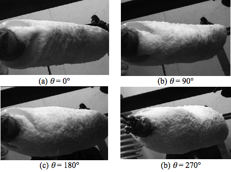 Fig. 5: Photos of cylindrical snow accretion on long-rod insulator. denotes approx. rotation angle along insulator between first accreted snow and current windward direction. flashover voltage Evaluating Flashover Voltage Properties of Snow Accreted Transmission Insulators Screen Shot 2016 02 26 at 11
