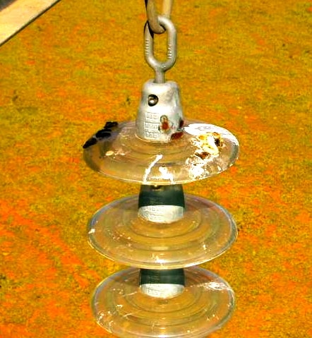 6.Birds in Brazil coat glass string in highly conductive excretions (photo courtesy of Cemig). insulator Bad Things Can Happen to Insulators Bad things 6