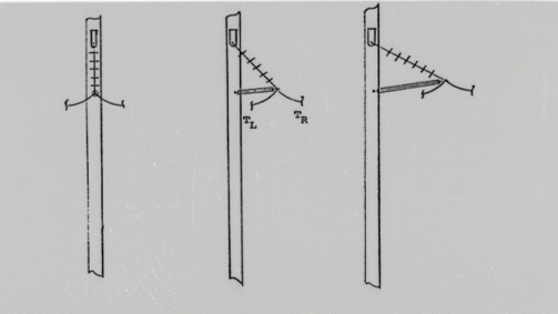 Strength Requirements of Braced HV Insulator Assemblies insulator assemblies Strength Requirements of Braced HV Insulator Assemblies Fig