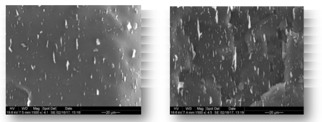 EM images of freeze-fractured surfaces of nano-composites filled with respectively 1% (left) and 5% (right) GnP. Materials Toward Development of Insulators of the Future materials Materials Toward Development of Insulators of the Future SEM images of freeze fractured surfaces of nanocomposites