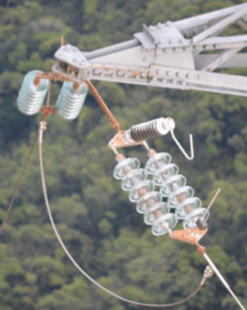 line arrester Line Arresters Mitigate Ground Potential Rise on Towers & Improve Electricity Quality EGLAs installed in South Pacific Islands