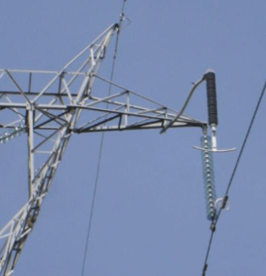 EGLA Type Line Arresters at 230 kV. EGLA Type Line Arrester Field Experience with EGLA Type Line Arresters in Mexico EGLA at 230 kV