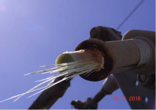 transmission line Brittle Fracture Failure of 400 kV Polymeric Insulator General view of insulator where fracture occurred
