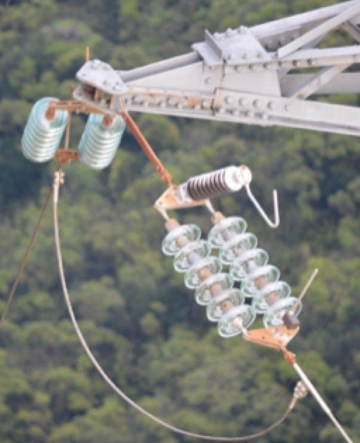 arrester Line Arresters Mitigate Ground Potential Rise on Towers & Improve Electricity Quality EGLAs installed in South Pacific Islands