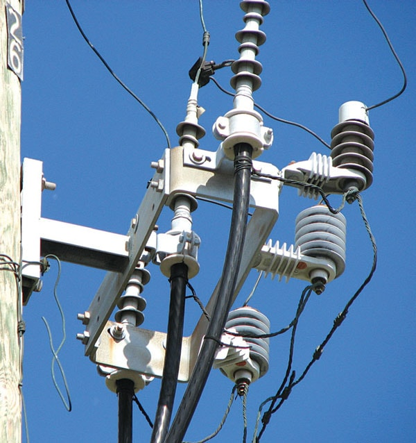 Distribution system riser pole and arresters.
