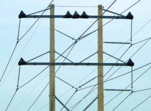 Transmission line with cones on each phase. distribution systems,pollution & wildlife, porcelain, insulators,insulator, power, distribution, contamination Resolving Problems on Distribution Systems from Pollution & Wildlife Topic 1 July 20 trans 300x221