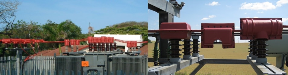 Case 7: Rural substation in Africa.Case 8: 20 kV substation in rural Germany wildlife Protecting Overhead Lines & Substations from Wildlife Induced Outages case last2