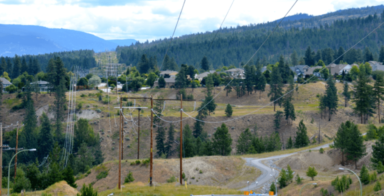 230 kV line running from Kelowna to Penticton is typical of those affected by woodpecker damage. bird Managing Bird Damage to Utility Structures 230 kV line running from Kelowna to Penticton is typical of those affected by woodpecker damage