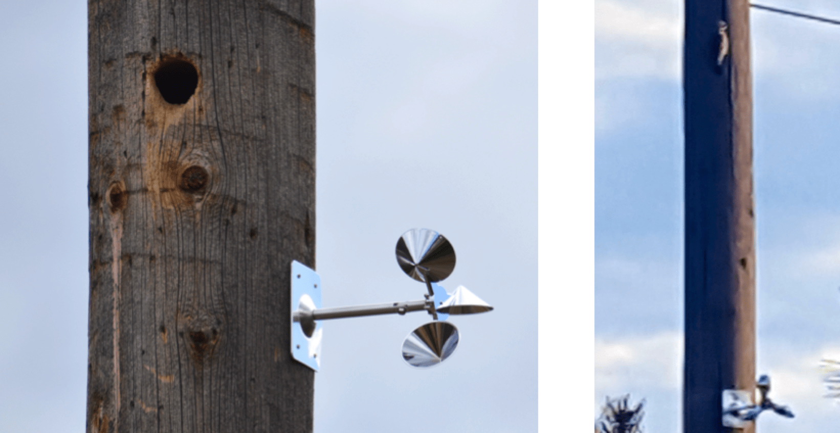 Pole mounted 'woodpecker discouragers' have not proven effective as long-term deterrents. See photo at right (photo courtesy FortisBC) with bird just above rotating device. bird Managing Bird Damage to Utility Structures Pole mounted  E2 80 98woodpecker discouragers E2 80 99 have not proven effective as long term deterrents