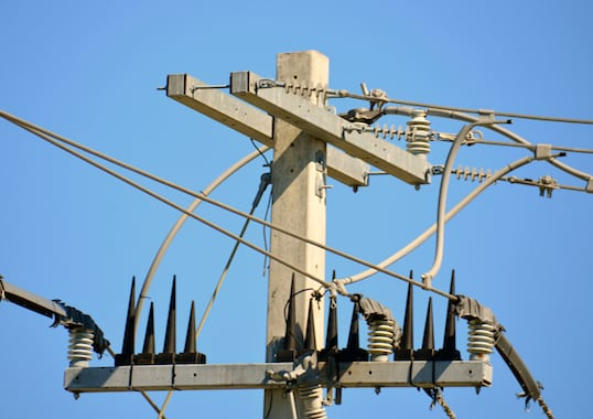 wildlife Protecting Overhead Lines & Substationsfrom Wildlife Induced Outages inmr