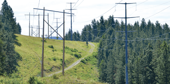transmission poles Canadian Utility's Trial Evaluation of Composite Transmission Poles Screen Shot 2017 09 15 at 12