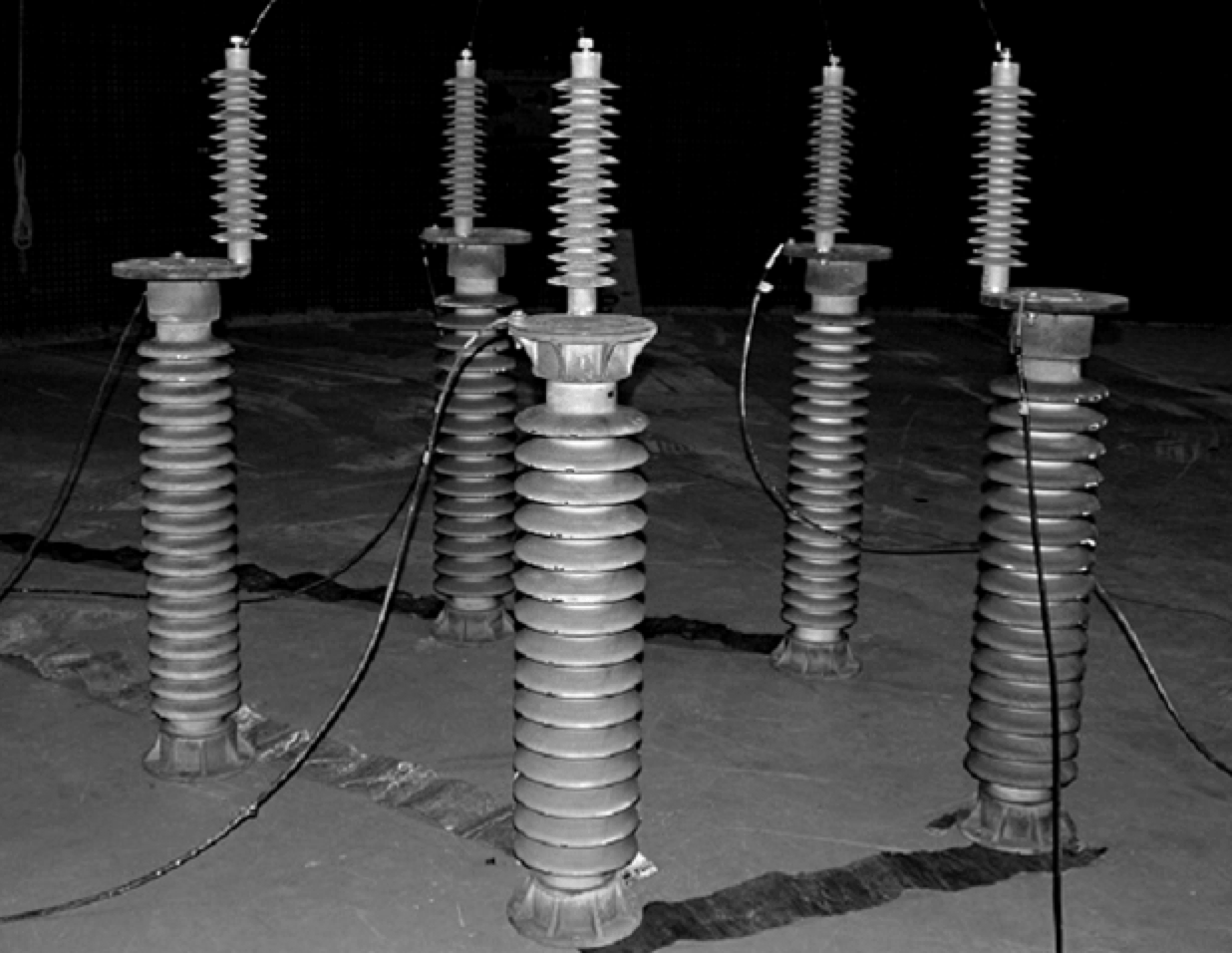 composite insulator [object object] Biological Growths on Composite Insulators all five arresters tested in parallel under same wetting