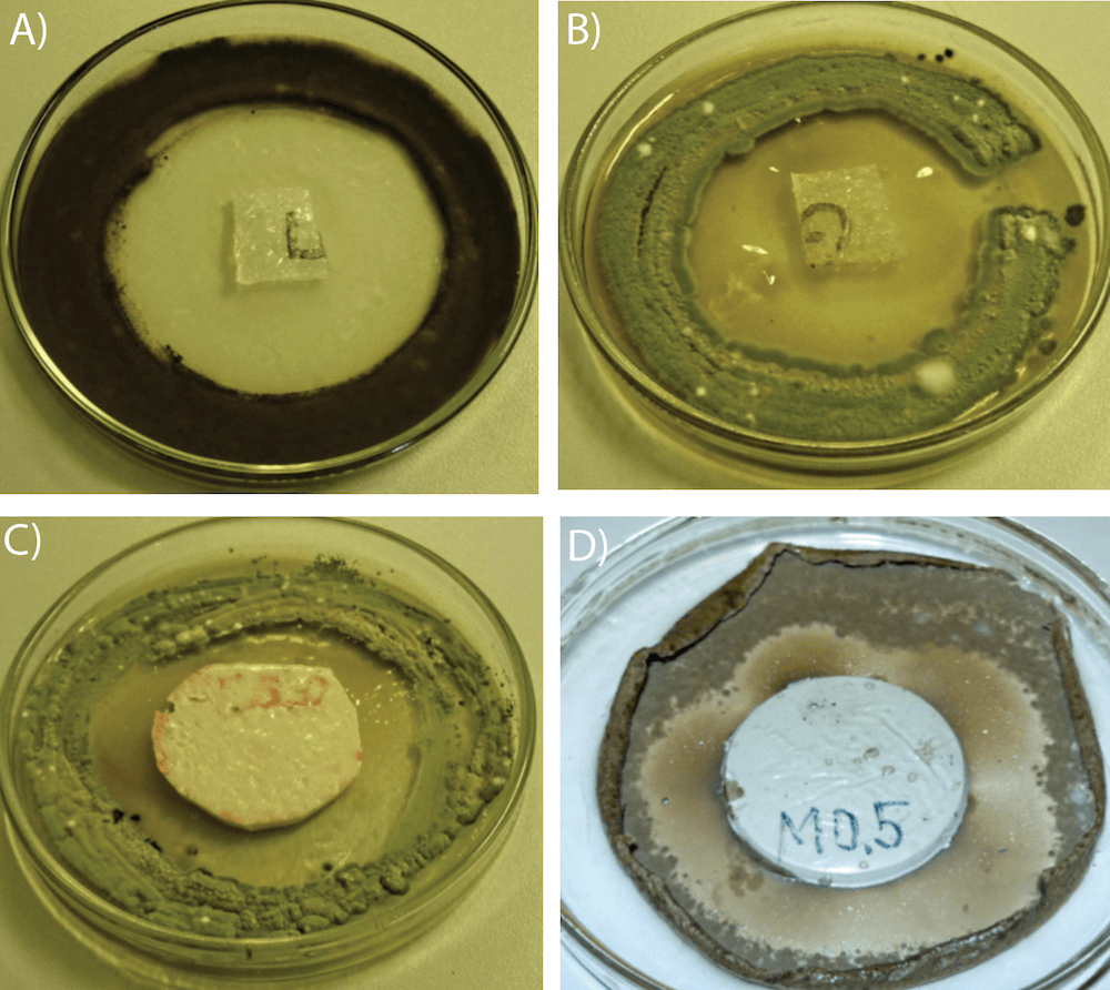 composite insulator [object object] Biological Growths on Composite Insulators silicone rubber with anti fungi biocides