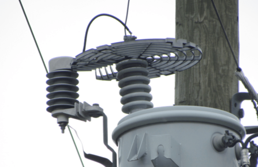 distribution system Best Practice in Lightning Protection for Distribution Systems Another example of effective wild life protector for arresters and bushings