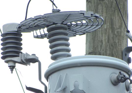 distribution system Best Practice in Lightning Protection for Distribution Systems Best Practice in Lightning Protection for Distribution Systems
