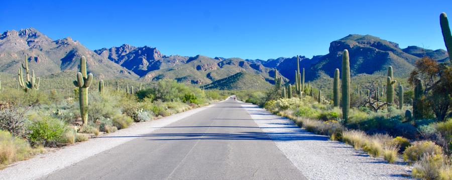 2019 INMR WORLD CONGRESS  inmr world congress Update on the 2019 INMR WORLD CONGRESS Tucson 3