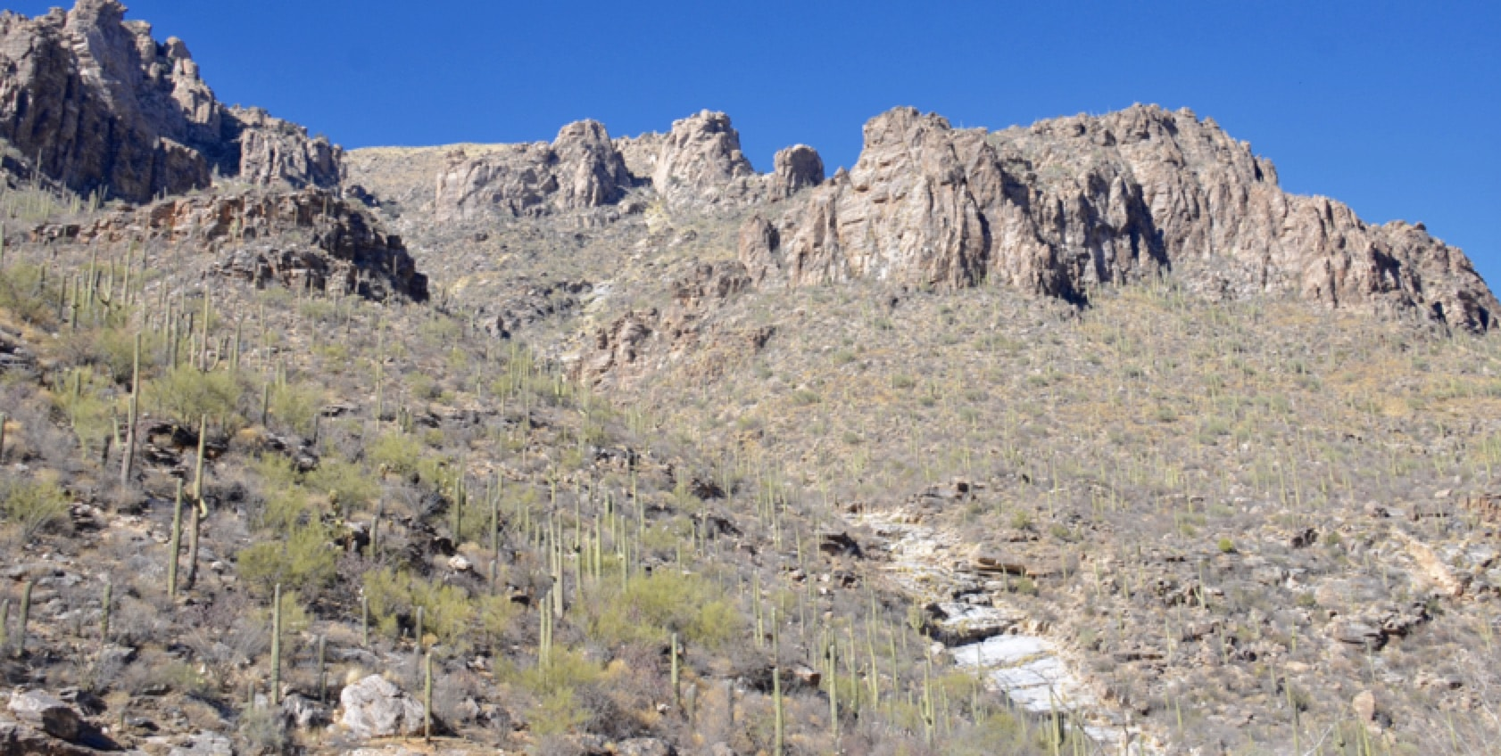 View of the Sabino Canyon neat the 2019 INMR WORLD CONGRESS 2019 INMR WORLD CONGRESS Update on the 2019 INMR WORLD CONGRESS, Oct 20-23, 2019: Westin La Paloma Tucson, Arizona tucson
