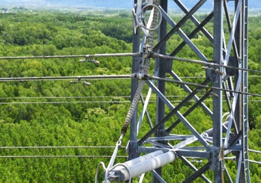 Mitigating Corona on Composite Line Insulators