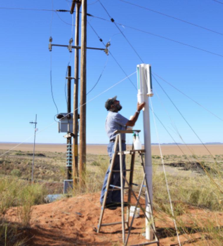 Man checking DDDGs